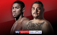 Anthony Joshua vs Andy Ruiz Jr fight time, date, TV channel, undercard, schedule, venue, betting odds and live stream details
