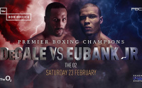 James DeGale vs Chris Eubank Jr World title