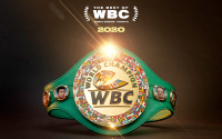 Vote for the best of the WBC 2020 tyson fury how to voting who won category fight of the year performance knockout ko fighter best