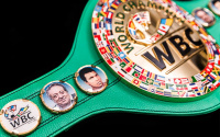WBC release their world rankings for May 2020