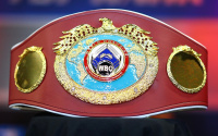 Nicola Adams elevated to WBO Female flyweight world champion